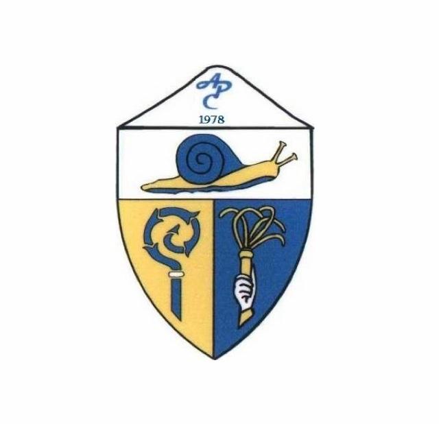 Coppa Ticino 5a Lega: Avanti la Campionese