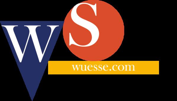 Wuesse.com SAGL, siti web, hosting, pubblicità online