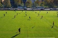 RSL, Lugano-Zurigo, il probabile line-up di partenza scelto da mister Celestini per il ritorno ufficiale alle ostilità